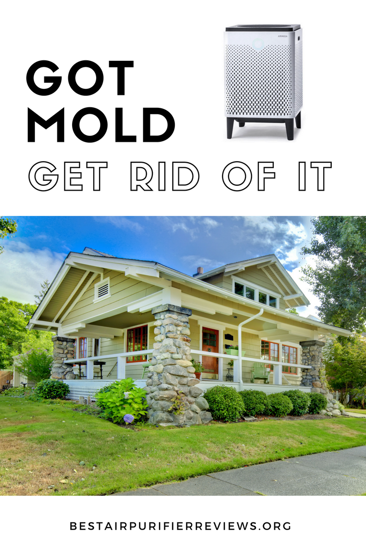 Get rid of Mold in your house