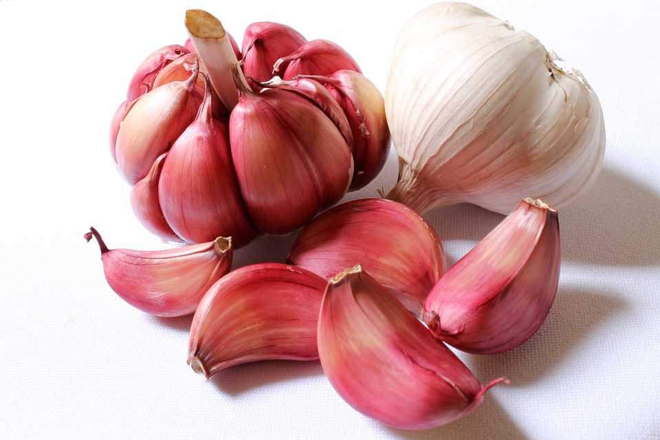 garlic for asthma