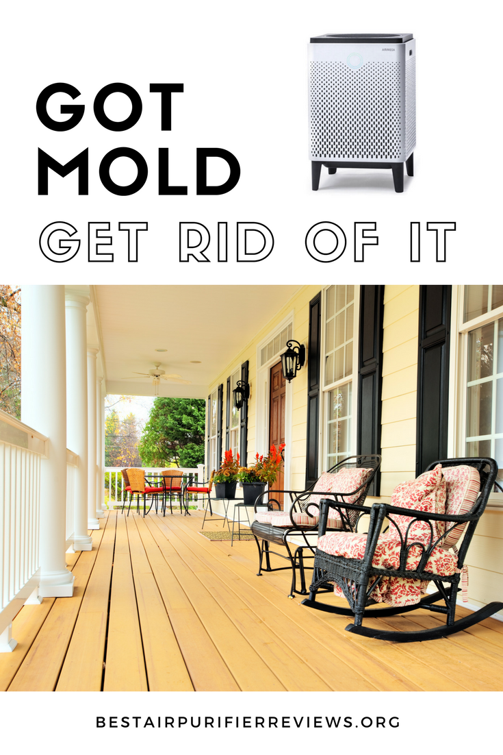 Get rid of Mold in your house-2